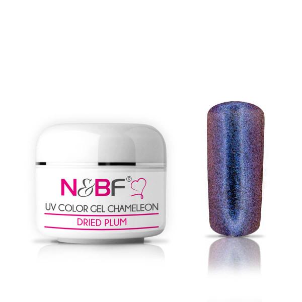 Nails-Beauty-Factory-UV-Color-Gel-Chameleon-Dried-Plum-5-ml